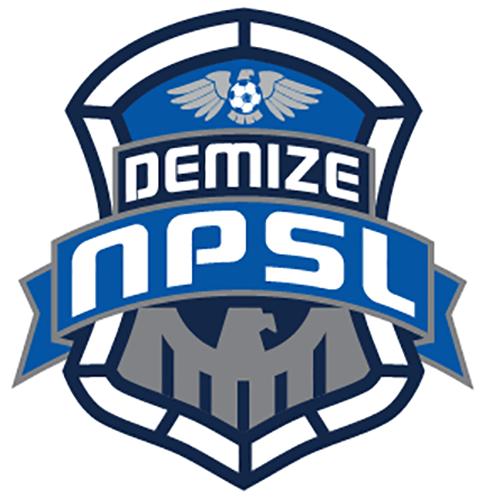 Demize Soccer
