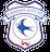 Cardiff City Futsal U19