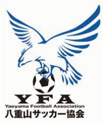 Yaeyama Football Association