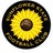 Sunflower State Fc